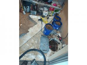 Repaired Slab Leak Fox Lane